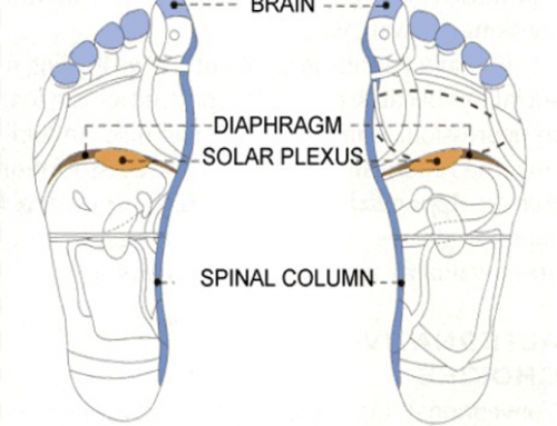 The Effect of Reflexology on pain intensity and duration of labor on primiparas
